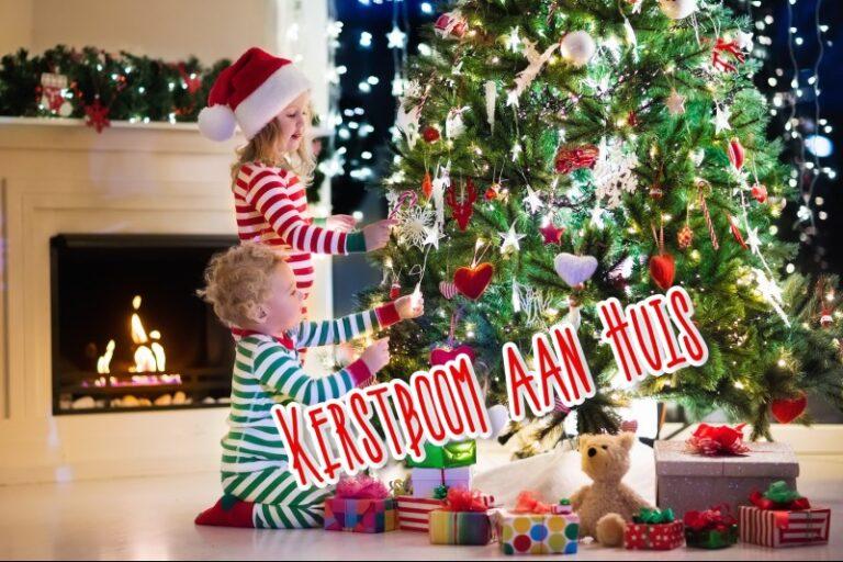 Kerstboom aan huis laten bezorgen? Geen probleem